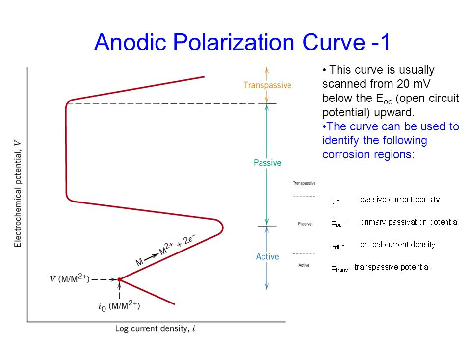 Anodic Polarization Curve -1 This curve is usually scanned from 20 mV below the E oc (open circuit potential) upward. The curve can be used to identif