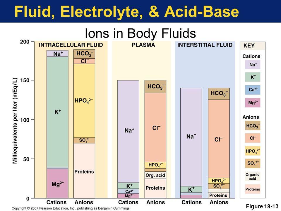Fluid, Electrolyte, & Acid-Base Figure 18-13 Ions in Body Fluids