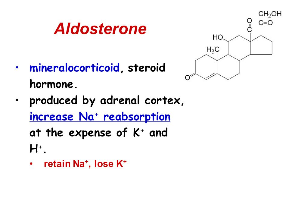 Aldosterone mineralocorticoid, steroid hormone. produced by adrenal cortex, increase Na + reabsorption at the expense of K + and H +. retain Na +, los