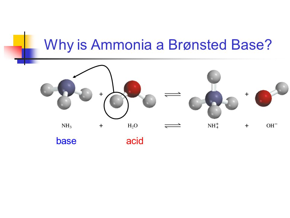 acidbase Why is Ammonia a Brønsted Base