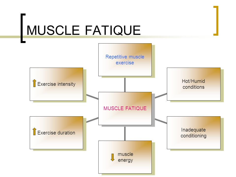 MUSCLE FATIQUE Repetitive muscle exercise Hot/Humid conditions Inadequate conditioning muscle energy Exercise duration Exercise intensity