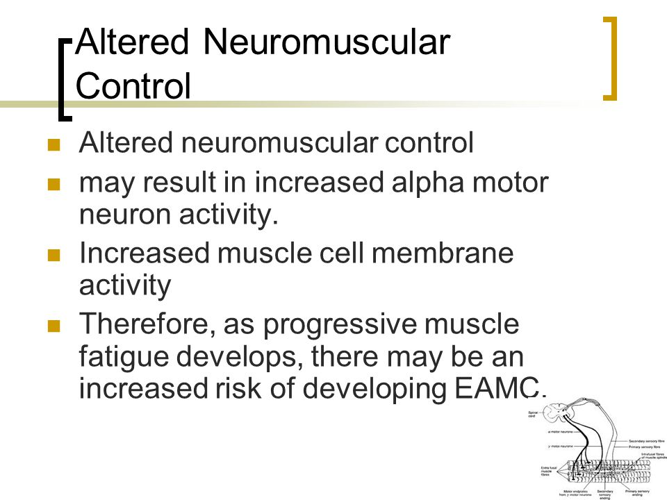 Altered Neuromuscular Control Altered neuromuscular control may result in increased alpha motor neuron activity.