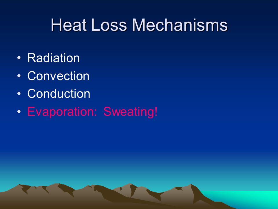 Heat Loss Mechanisms Radiation Convection Conduction Evaporation: Sweating!