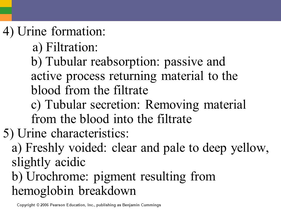 Copyright © 2006 Pearson Education, Inc., publishing as Benjamin Cummings 4) Urine formation: a) Filtration: b) Tubular reabsorption: passive and active process returning material to the blood from the filtrate c) Tubular secretion: Removing material from the blood into the filtrate 5) Urine characteristics: a) Freshly voided: clear and pale to deep yellow, slightly acidic b) Urochrome: pigment resulting from hemoglobin breakdown