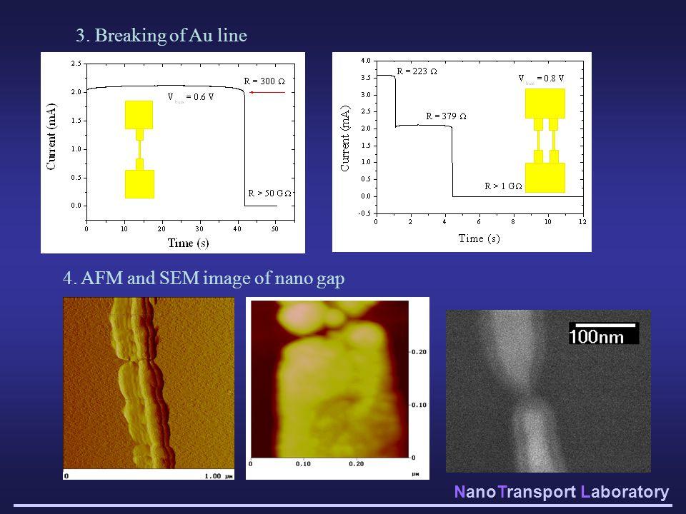 NanoTransport Laboratory 3. Breaking of Au line 4. AFM and SEM image of nano gap