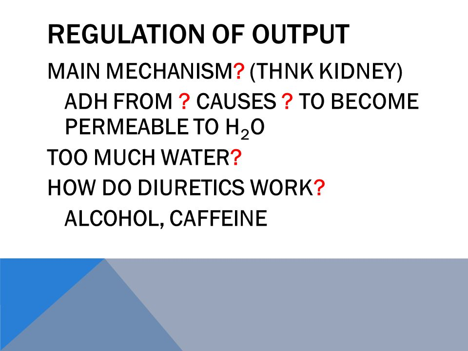 REGULATION OF OUTPUT MAIN MECHANISM. (THNK KIDNEY) ADH FROM .