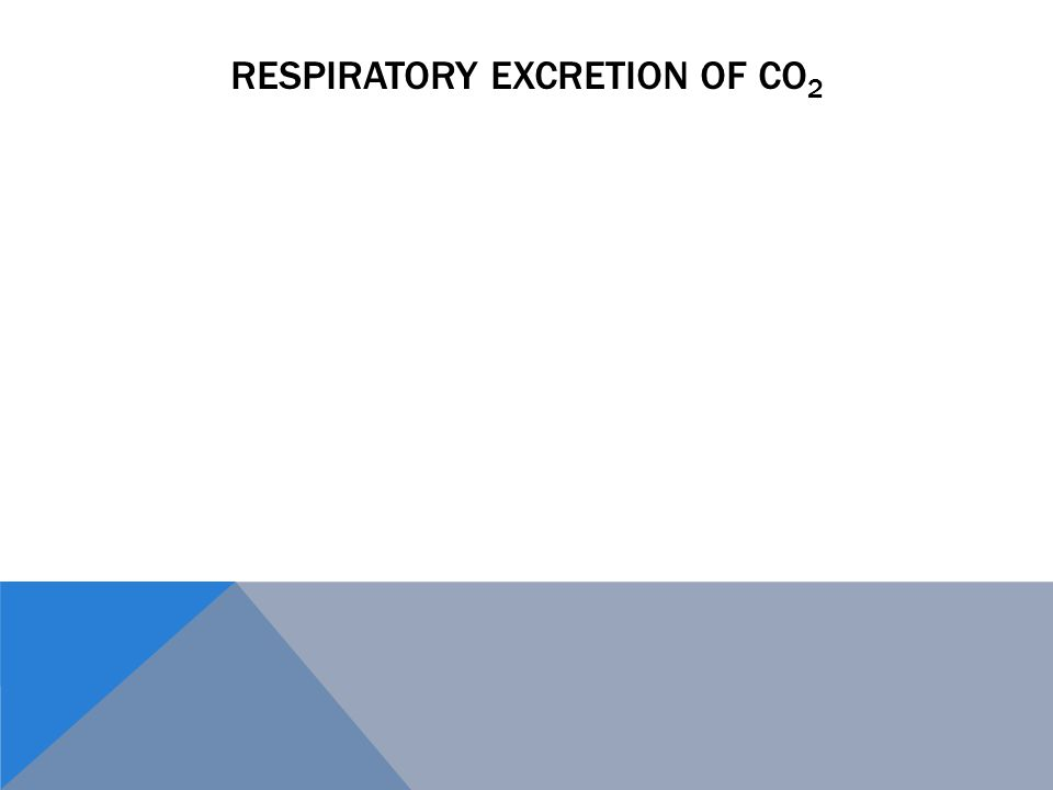 RESPIRATORY EXCRETION OF CO 2