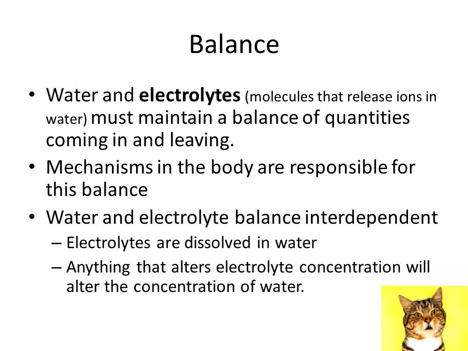 Balance Water and electrolytes (molecules that release ions in water) must maintain a balance of quantities coming in and leaving.