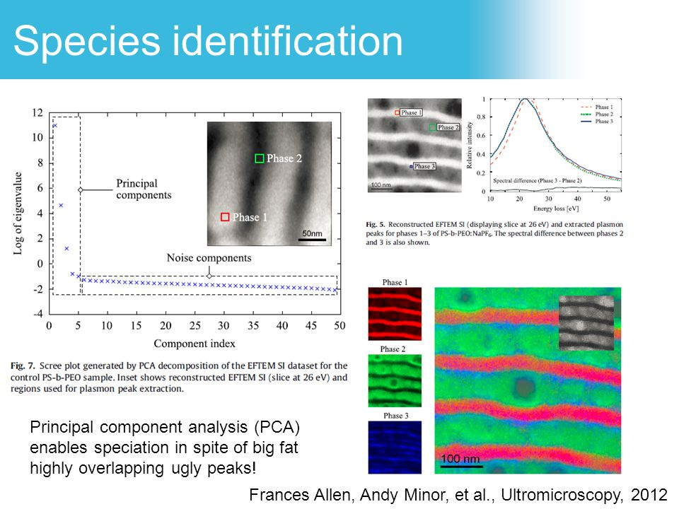 Species identification Principal component analysis (PCA) enables speciation in spite of big fat highly overlapping ugly peaks! Frances Allen, Andy Mi