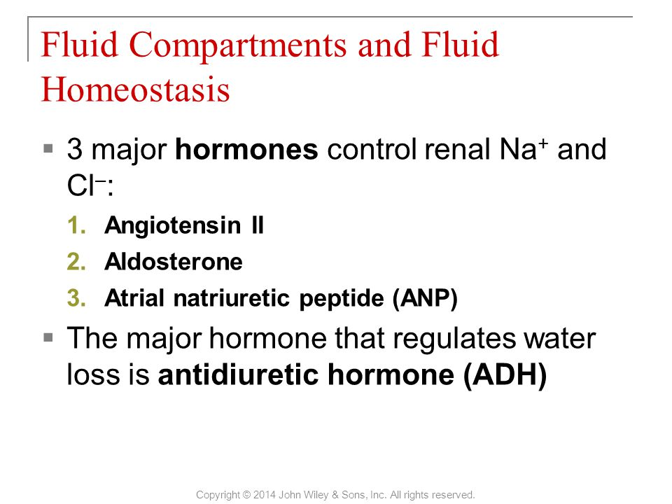  3 major hormones control renal Na + and Cl – : 1.Angiotensin II 2.Aldosterone 3.Atrial natriuretic peptide (ANP)  The major hormone that regulates