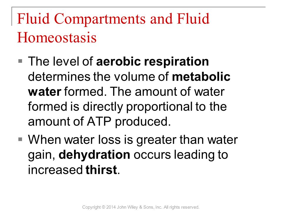 Fluid Compartments and Fluid Homeostasis Copyright © 2014 John Wiley & Sons, Inc.