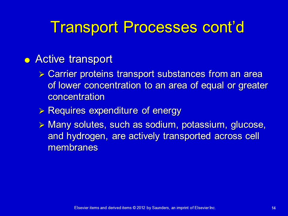 Elsevier items and derived items © 2012 by Saunders, an imprint of Elsevier Inc. 14 Transport Processes cont'd  Active transport  Carrier proteins t