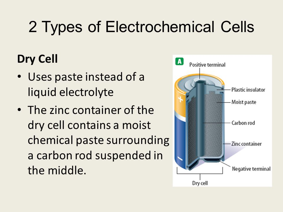 Dry Cell Uses paste instead of a liquid electrolyte The zinc container of the dry cell contains a moist chemical paste surrounding a carbon rod suspended in the middle.