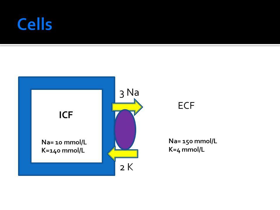 ICF Na= 10 mmol/L K=140 mmol/L ECF Na= 150 mmol/L K=4 mmol/L 3 Na 2 K