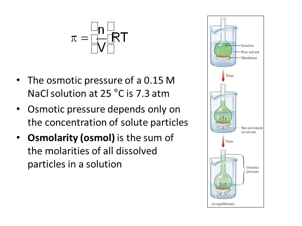 The osmotic pressure of a 0.15 M NaCl solution at 25 °C is 7.3 atm Osmotic pressure depends only on the concentration of solute particles Osmolarity (osmol) is the sum of the molarities of all dissolved particles in a solution