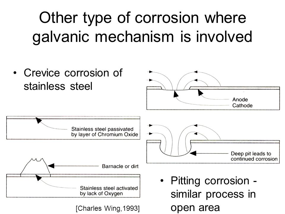 Other type of corrosion where galvanic mechanism is involved Crevice corrosion of stainless steel [Charles Wing,1993] Pitting corrosion - similar process in open area