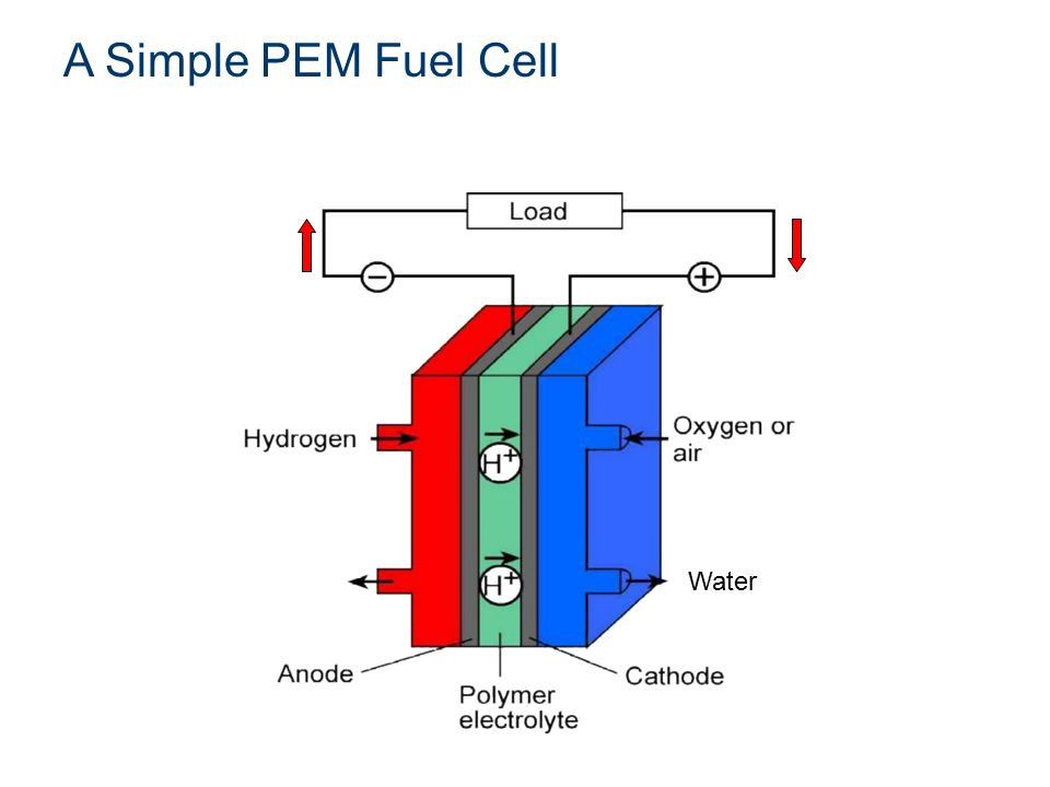 Hydrogen + Oxygen  Electricity + Water Water A Simple PEM Fuel Cell