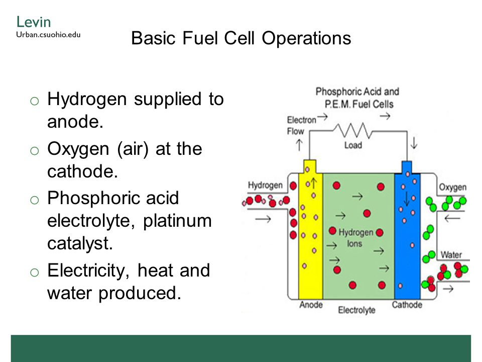 Basic Fuel Cell Operations o Hydrogen supplied to anode.