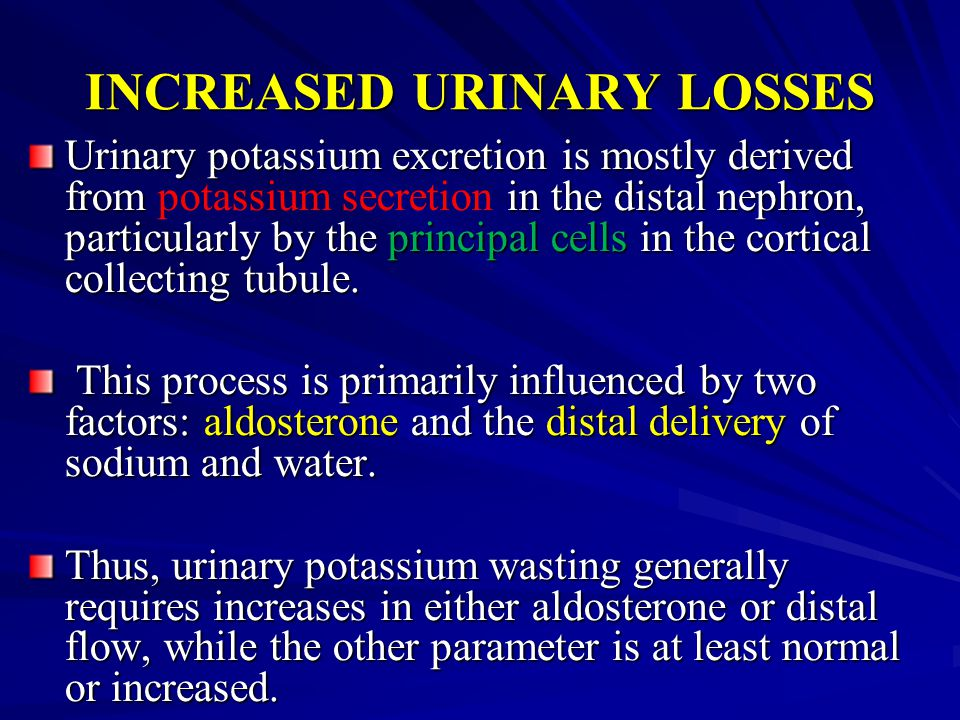 INCREASED URINARY LOSSES Urinary potassium excretion is mostly derived from in the distal nephron, particularly by the principal cells in the cortical