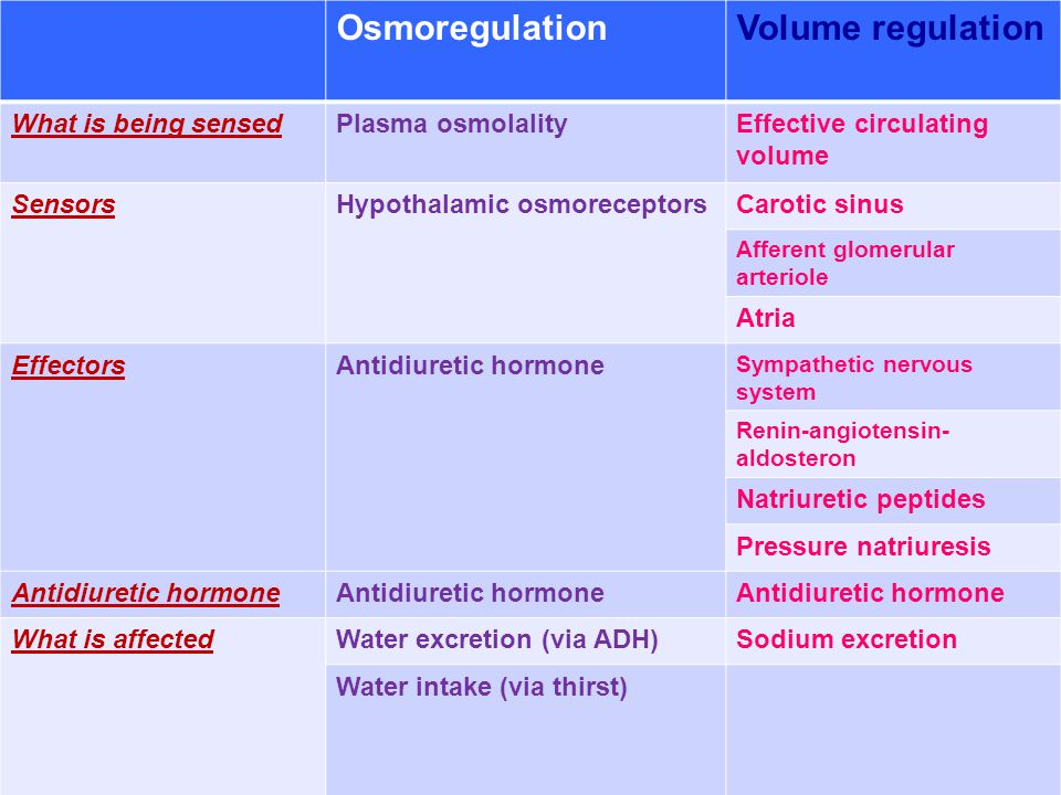 OsmoregulationVolume regulation What is being sensedPlasma osmolalityEffective circulating volume SensorsHypothalamic osmoreceptorsCarotic sinus Affer