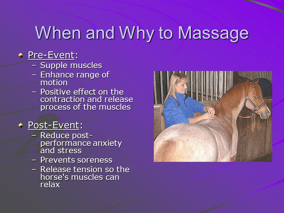 When and Why to Massage Pre-Event: Pre-Event: –Supple muscles –Enhance range of motion –Positive effect on the contraction and release process of the muscles Post-Event: Post-Event: –Reduce post- performance anxiety and stress –Prevents soreness –Release tension so the horse s muscles can relax