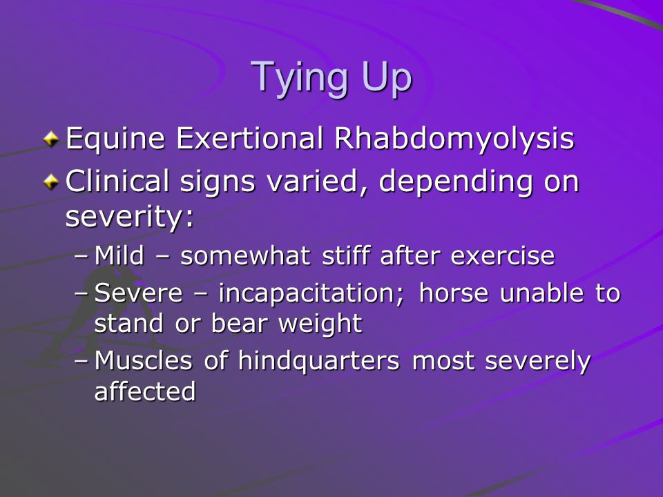 Tying Up Equine Exertional Rhabdomyolysis Clinical signs varied, depending on severity: –Mild – somewhat stiff after exercise –Severe – incapacitation; horse unable to stand or bear weight –Muscles of hindquarters most severely affected