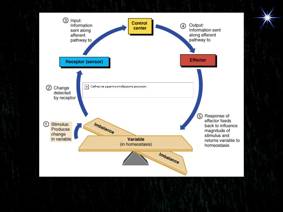 PITUITARY ANTIDIURETIC HORMONE (ADH) SERUM OSMOCITY