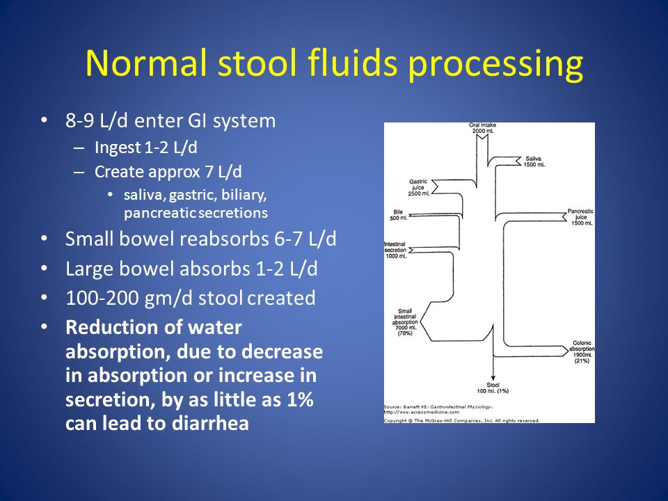 Normal stool fluids processing 8-9 L/d enter GI system – Ingest 1-2 L/d – Create approx 7 L/d saliva, gastric, biliary, pancreatic secretions Small bo