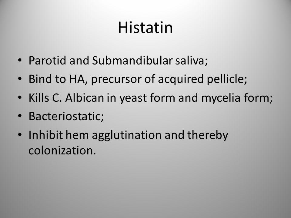 Histatin Parotid and Submandibular saliva; Bind to HA, precursor of acquired pellicle; Kills C. Albican in yeast form and mycelia form; Bacteriostatic