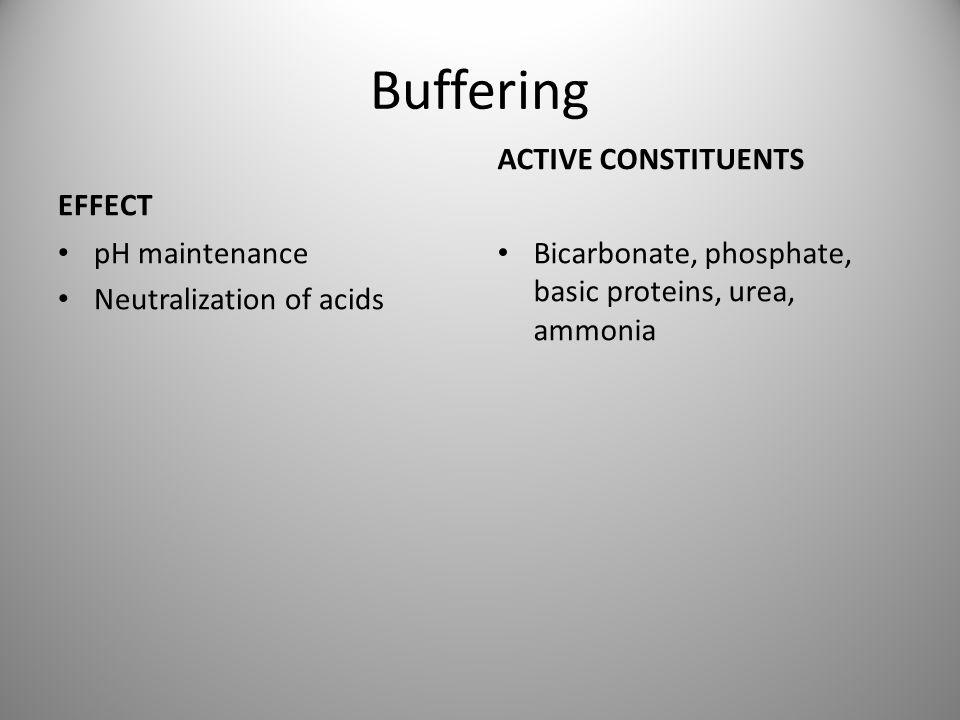 Buffering EFFECT pH maintenance Neutralization of acids ACTIVE CONSTITUENTS Bicarbonate, phosphate, basic proteins, urea, ammonia
