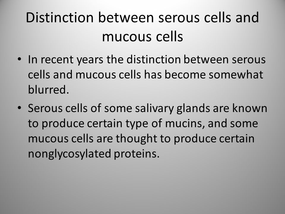 Distinction between serous cells and mucous cells In recent years the distinction between serous cells and mucous cells has become somewhat blurred. S