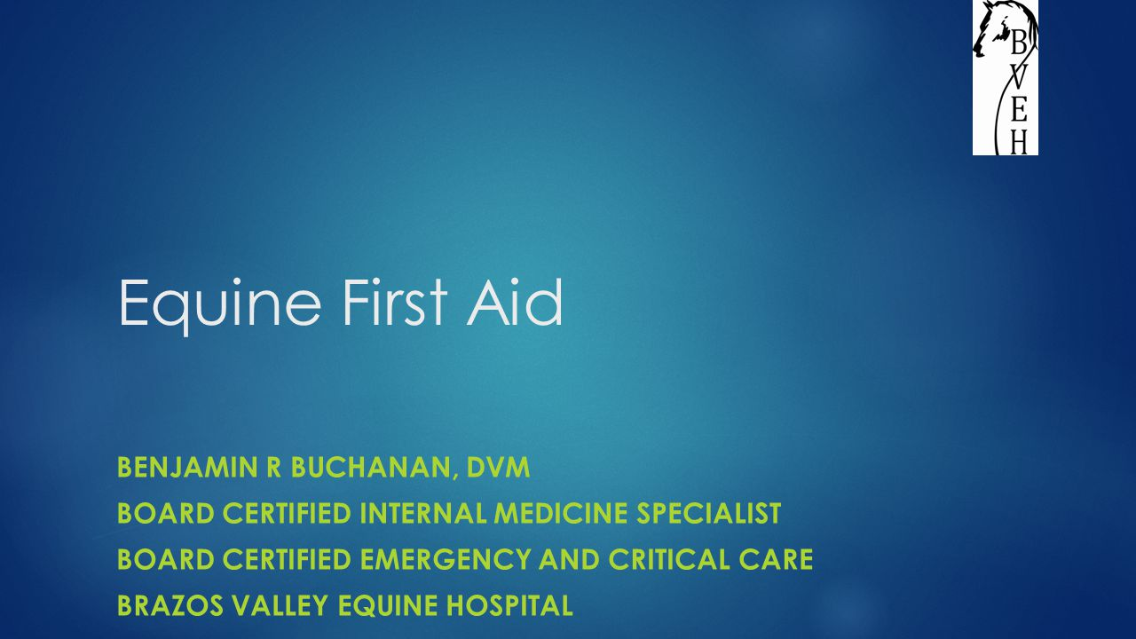 Objectives  Common Conditions  Lacerations  Eye problems  Colic  Overexertion  Lameness  First Aid Kit