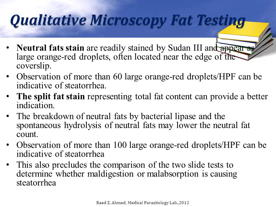 Qualitative Microscopy Fat Testing Neutral fats stain are readily stained by Sudan III and appear as large orange-red droplets, often located near the