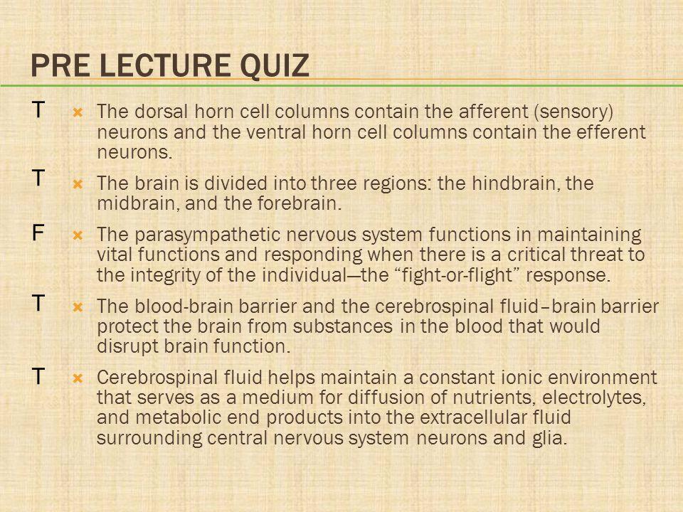 CEREBRUM  Frontal lobe: motor, anticipation  Parietal lobe: somatosensory  Temporal lobe: hearing, memory  Occipital lobe: vision  Limbic system: emotional