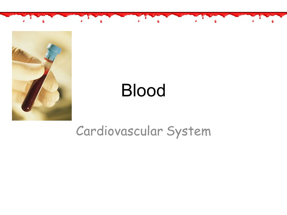 Blood Functions 1.