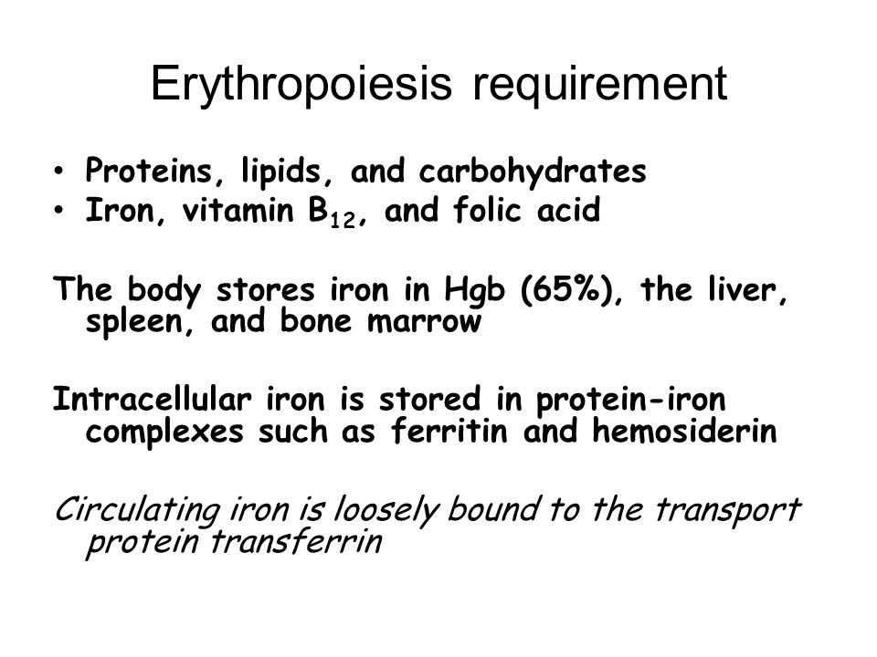 Erythropoiesis requirement Proteins, lipids, and carbohydrates Iron, vitamin B 12, and folic acid The body stores iron in Hgb (65%), the liver, spleen