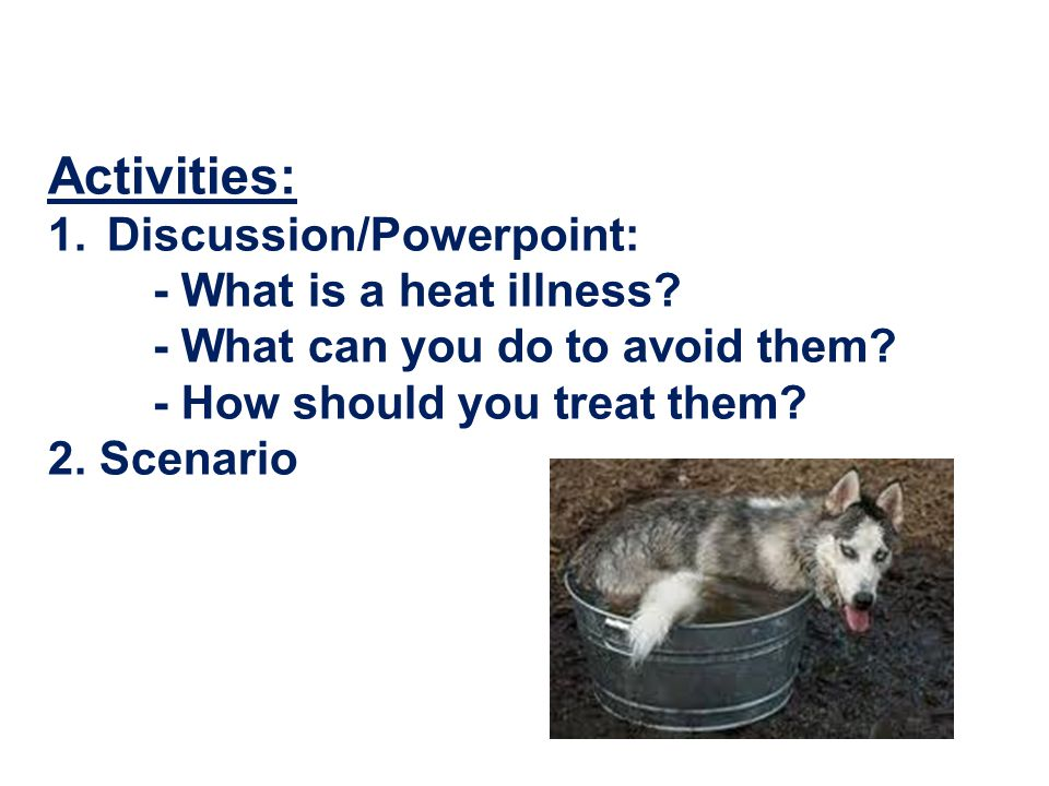 Activities: 1.Discussion/Powerpoint: - What is a heat illness.