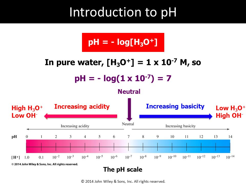 In pure water, [H 3 O + ] = 1 x 10 -7 M, so pH = - log(1 x 10 -7 ) = 7 Increasing acidity Increasing basicity Neutral High H 3 O + Low OH - Low H 3 O