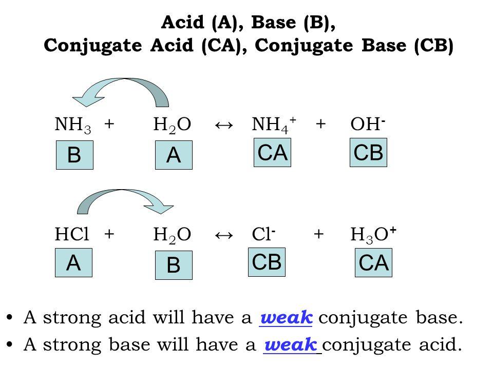 Acid (A), Base (B), Conjugate Acid (CA), Conjugate Base (CB) NH 3 +H 2 O ↔NH 4 + +OH - HCl+H 2 O ↔Cl - + H 3 O + A strong acid will have a weak conjug