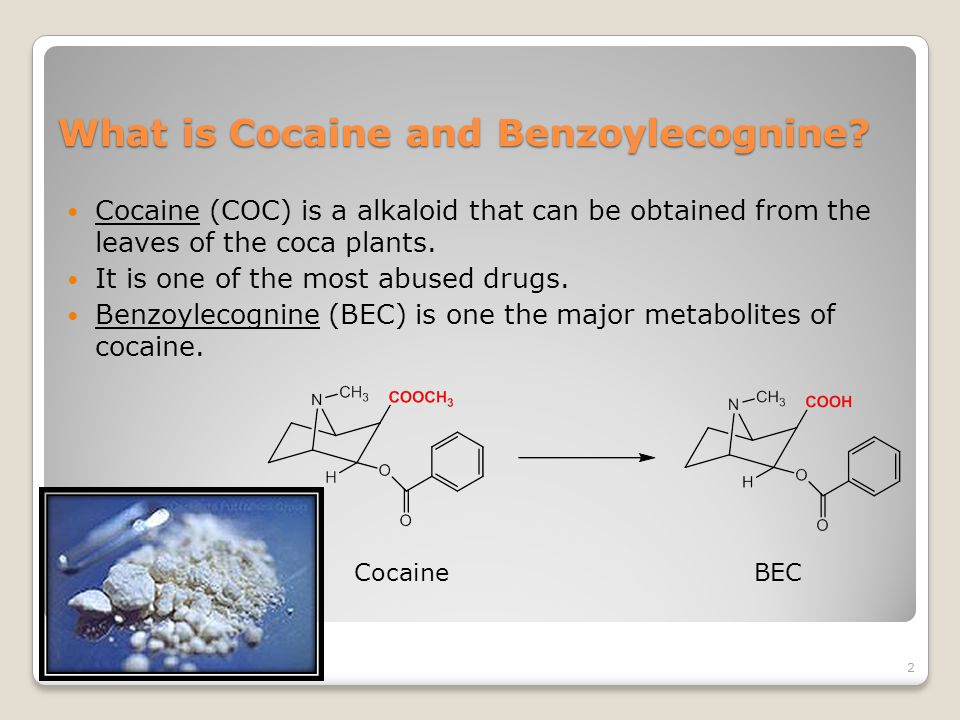 What is Cocaine and Benzoylecognine.