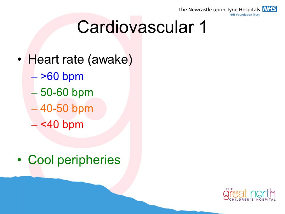 Cardiovascular 1 Heart rate (awake) –>60 bpm –50-60 bpm –40-50 bpm –<40 bpm Cool peripheries