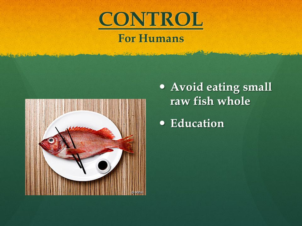 CONTROL For Humans Avoid eating small raw fish whole Education