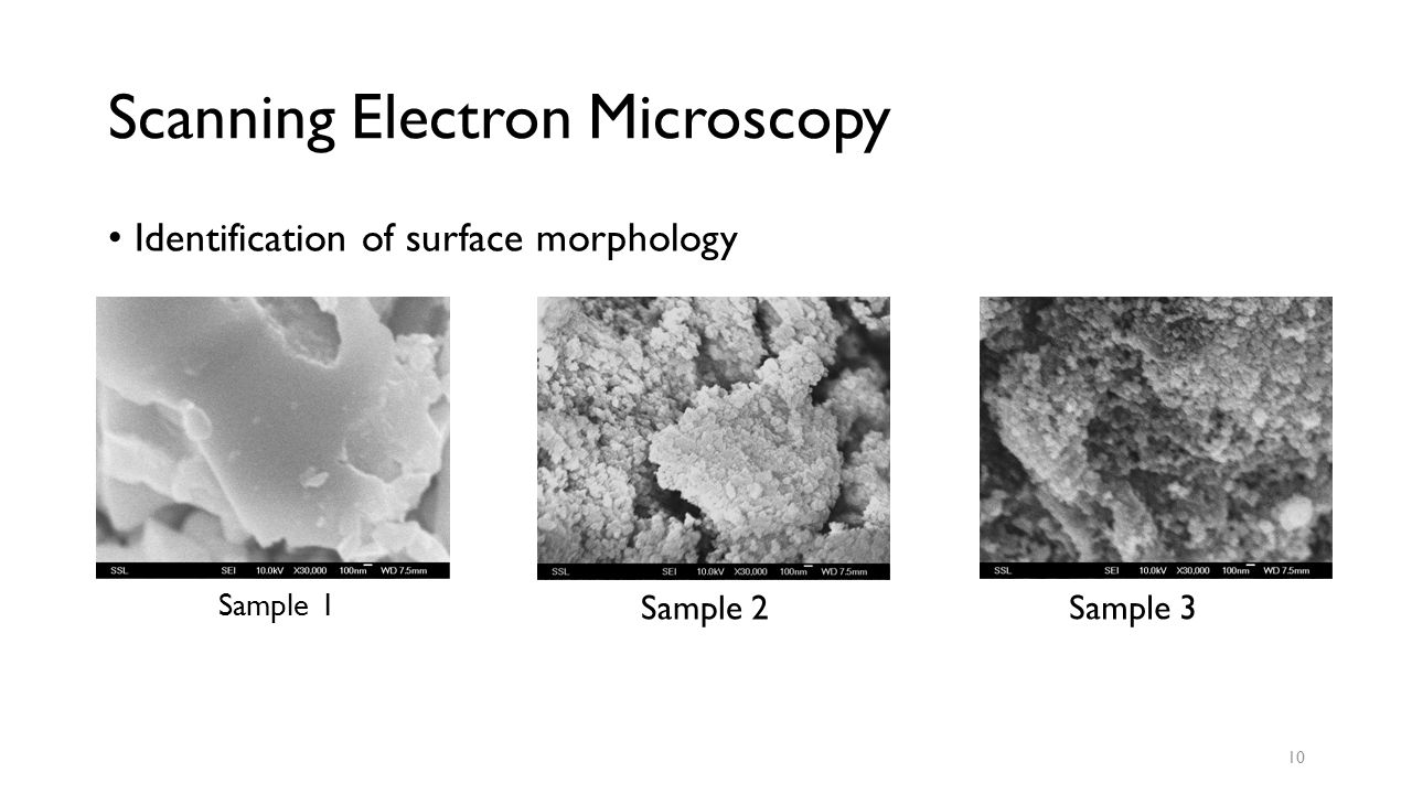 Scanning Electron Microscopy Identification of surface morphology Sample 1 Sample 2 Sample 3 10