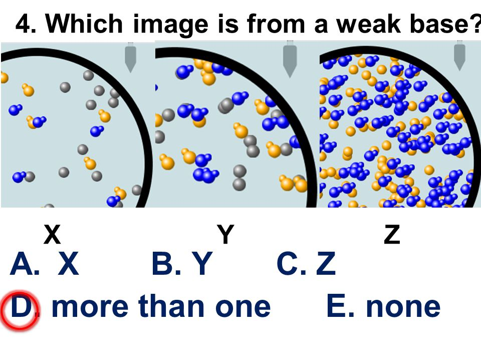 4. Which image is from a weak base A.X B. Y C. Z D. more than one E. none X Y Z