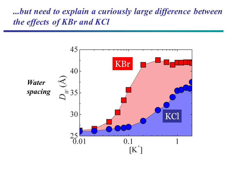 KCl KBr Water spacing...but need to explain a curiously large difference between the effects of KBr and KCl