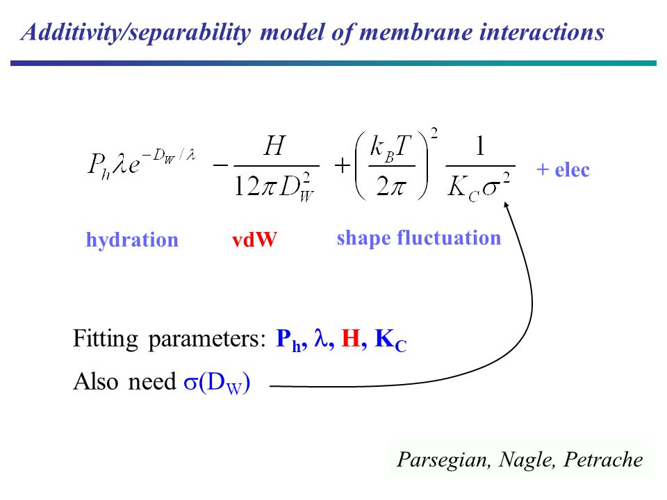vdW shape fluctuation hydration Additivity/separability model of membrane interactions + elec Fitting parameters: P h,, H, K C Also need  (D W ) Parsegian, Nagle, Petrache