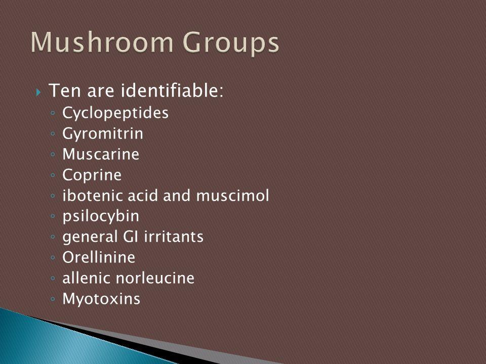  Ten are identifiable: ◦ Cyclopeptides ◦ Gyromitrin ◦ Muscarine ◦ Coprine ◦ ibotenic acid and muscimol ◦ psilocybin ◦ general GI irritants ◦ Orellinine ◦ allenic norleucine ◦ Myotoxins