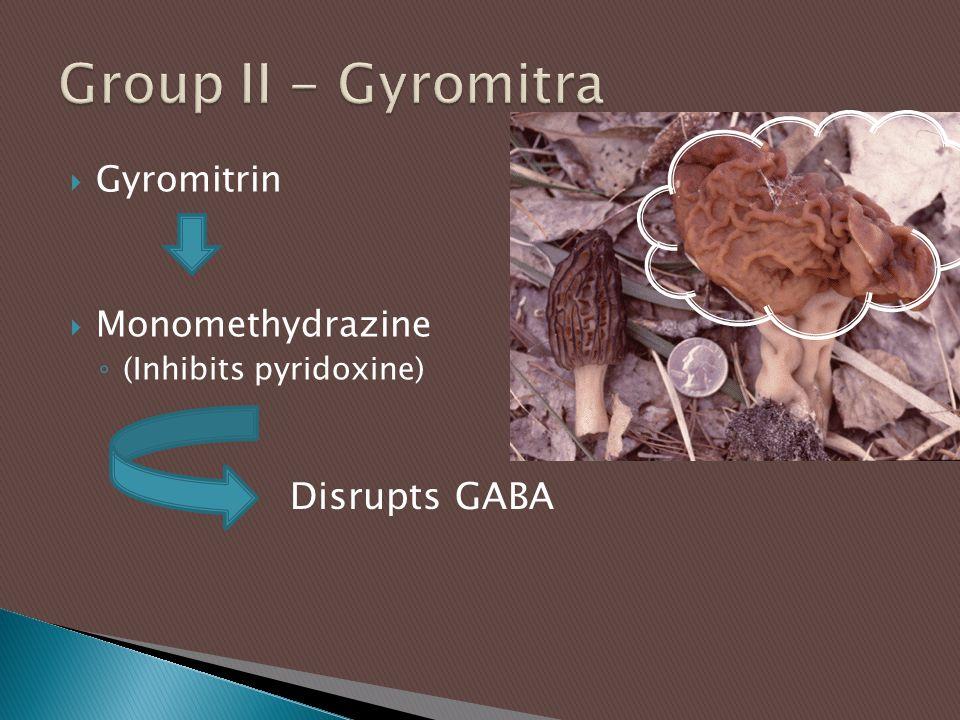  Gyromitrin  Monomethydrazine ◦ (Inhibits pyridoxine) Disrupts GABA