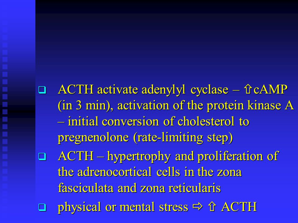  ACTH activate adenylyl cyclase –  cAMP (in 3 min), activation of the protein kinase A – initial conversion of cholesterol to pregnenolone (rate-lim