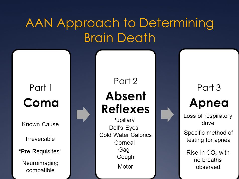 AAN Approach to Determining Brain Death Part 1 Coma Part 2 Absent Reflexes Part 3 Apnea Known Cause Irreversible Pupillary Doll's Eyes Cold Water Calo